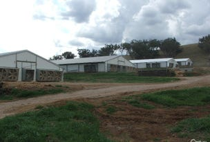 KERRIBREE Manilla Road, Attunga, NSW 2345