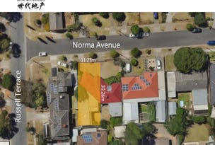1 Norma Avenue, Edwardstown, SA 5039