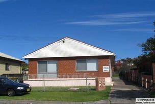 3/39 Merrett Avenue, Cringila, NSW 2502