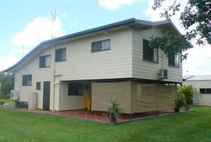 376 Drynie Road, Brandon, Qld 4808