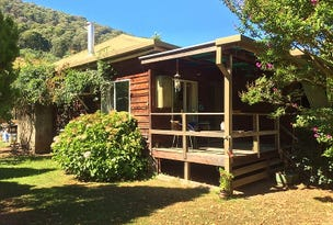 Running Springs - 447 Little Snowy Creek Rd, Eskdale, Vic 3701