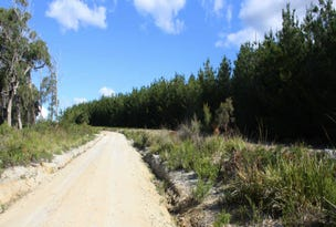 Red Road, Pipers River, Tas 7252