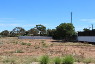 Lot 32 First Street, Napperby, SA 5540