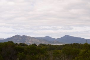 Lot 168 Dolphin Sands Road, Dolphin Sands, Tas 7190