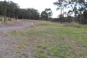 Lot 735, 1 The Fairway, Tallwoods Village, NSW 2430