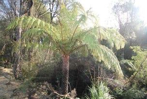 Lot 4 & 5, Hilders Road, Irishtown, Tas 7330