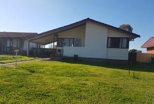 45 Cedar Cres, Forbes, NSW 2871