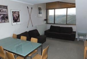 411 Arlberg, Mount Hotham, Vic 3741