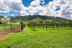 426 Douglas Creek Road (Stewart Creek Valley), Daintree, Qld 4873