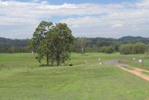 29 Tareeda Court, Spring Grove, NSW 2470