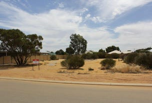 17 Carrington Way, Merredin, WA 6415