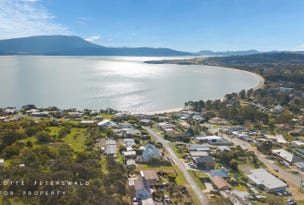 8 Blessington Street, South Arm, Tas 7022