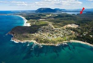 Lot 109 McGilvray Road, Bonny Hills, NSW 2445