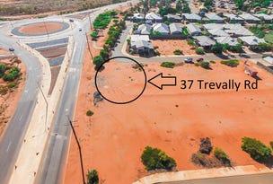 37 Trevally Road, South Hedland, WA 6722