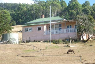 1730 South Riana Road, Gunns Plains, Tas 7315