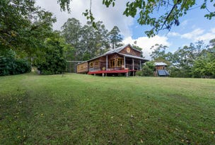 100 Frickers Road, Nymboida, NSW 2460