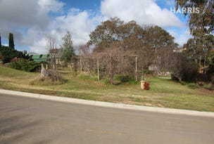 Lot 81 Daylesford  Court, Mount Barker, SA 5251