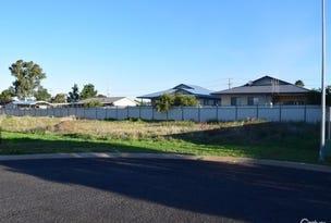 3 Marie Rose Close, Parkes, NSW 2870