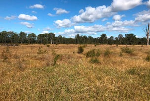 Lot 2 Wants Lane, Glenugie, NSW 2460