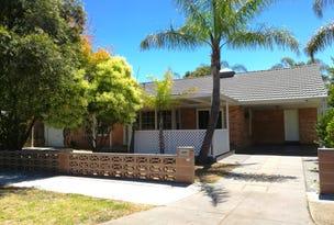 6 Morris Grove, Klemzig, SA 5087