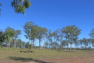Lot 23 Brolga Drive, Gulmarrad, NSW 2463