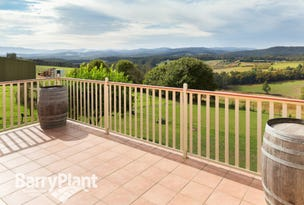 60 Ure Road, Gembrook, Vic 3783