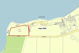 153 Rothalls Road, Cape Jaffa, SA 5275