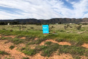 Lot 11, Muster Drive, Napperby, SA 5540