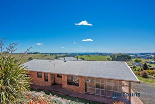108 Dudfields Road, Mount Hicks, Tas 7325