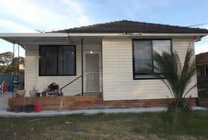 109 Biloela Road, Villawood, NSW 2163