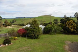 ** Blackwells Road, Winnaleah, Tas 7265
