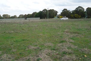 Lot 101 Manor Hills off Surry Street, Collector, NSW 2581