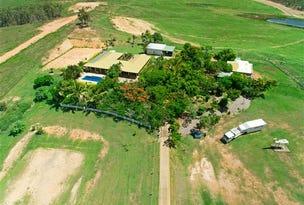 L1 - 491 Barmaryee Road, Barmaryee, Qld 4703