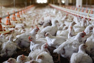 Melbourne, address available on request