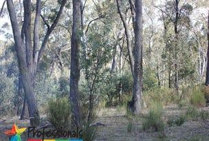 300 Mt Haven Way, Meadow Flat, NSW 2795