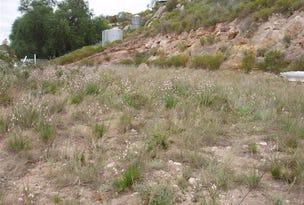 23 & 24 Cliff View Drive WONGULLA via, Walker Flat, SA 5238