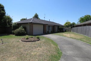 1 Ibis Court, Traralgon, Vic 3844