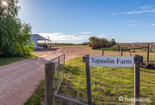 2756 Tapalin Mail Road, Euston, NSW 2737