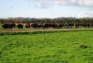 RA 490 Partridge Road, Togari, Tas 7330