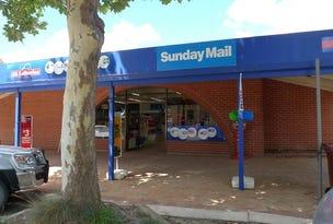 29 Robert Street, Maitland, SA 5573