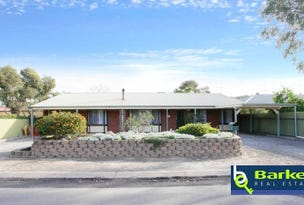 41 Panter Street, Willaston, SA 5118