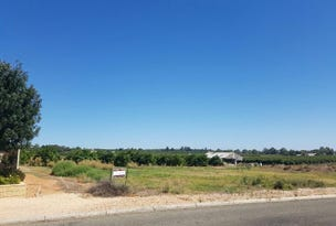 Lot 100 Mary Starr Drive, Waikerie, SA 5330