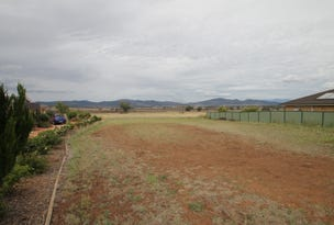 19 Morning View Close, Quirindi, NSW 2343