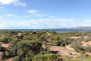 Lot 101 Port Paterson, Port Paterson, SA 5700