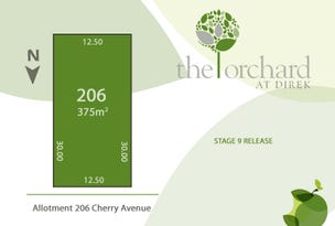 Lot 206 Cherry Avenue, Direk, SA 5110