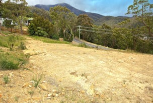 29 Clutha Place, South Hobart, Tas 7004