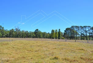 Lot 99 East Nannup Road, Nannup, WA 6275