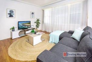 1 Werribi Street, Mayfield West, NSW 2304