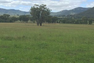1977/L14 Dunville Loop Road, Rylstone, NSW 2849