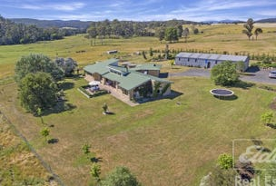213 Lewis Road, Pipers River, Tas 7252